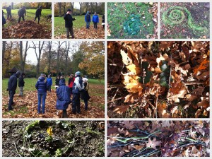 Environmental Arts Therapy Autumn Workshop